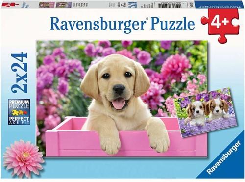 Ravensbuger Puzzel 2x24 stukjes  Harige vriendjes
