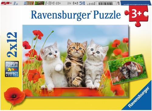 Ravensburger 00.007.626 puzzle Tile puzzle 12 pc(s)
