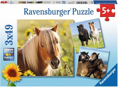 Ravensburger 4005556080113 puzzle Jigsaw puzzle 49 pc(s)