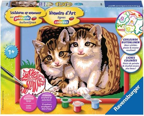 Ravensburger Katjes in een mand