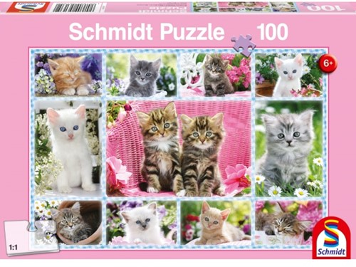 Schmidt Spiele 56135 puzzle Jigsaw puzzle 100 pc(s)