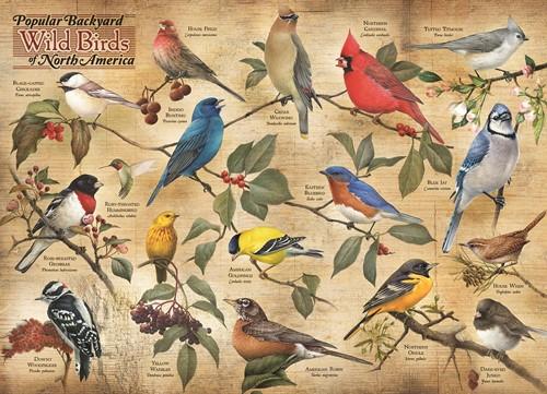 Cobble Hill puzzle 1000 pieces - Popular Backyard Wild Birds