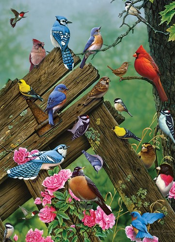 Cobble Hill puzzle 1000 pieces - Birds of the Forest