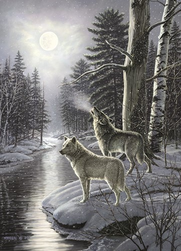 Cobble Hill puzzle 1000 pieces - Wolves by Moonlight