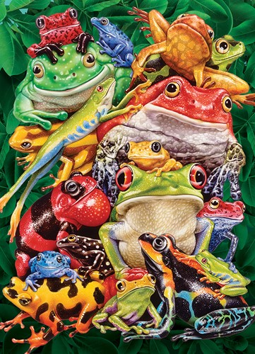 Cobble Hill puzzle 1000 pieces - Frog Business
